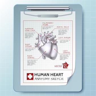 Anatomische zwischenablage illustration Kostenlosen Vektoren