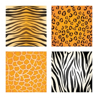 Animal-print-design.