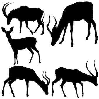 Antilopen-silhouetten Premium Vektoren