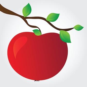 Apfel auf einem ast - einfache vektorillustration