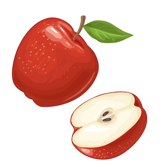Apfel ganz und halb mit blatt. farbe flache illustration für plakat, web. auf weißem hintergrund isoliert.