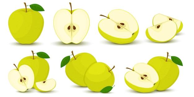 Apfel. heller vektorsatz aus bunter hälfte, scheibe und segment von saftigem grünem apfel. frische cartoons äpfel auf weißem hintergrund.