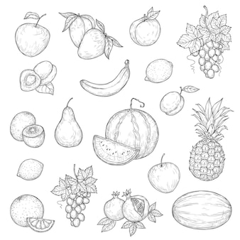 Apfel-, mango-, orangen- und bananen-set