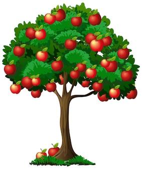 Apfelbaum isoliert auf weiß