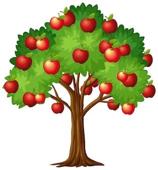 Apfelbaum lokalisiert auf weiß