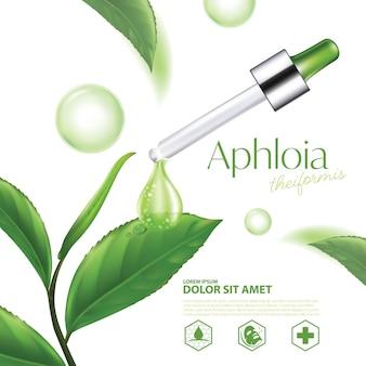 Aphloia theiformis madagassischer tee natürliche hautpflegekosmetik