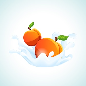 Aprikosen in milchspritzer