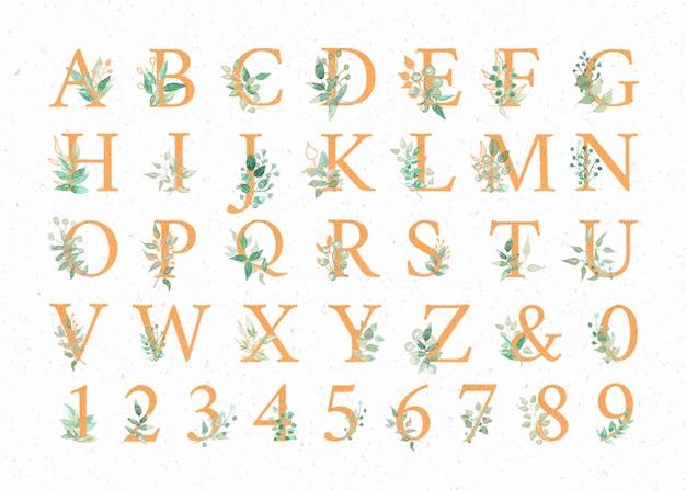Aquarell-alphabete
