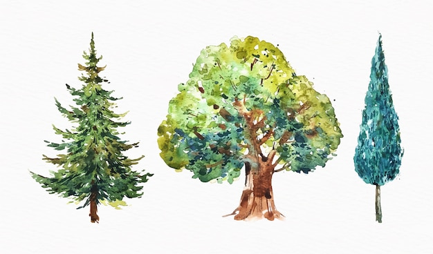 Aquarell art von bäumen set