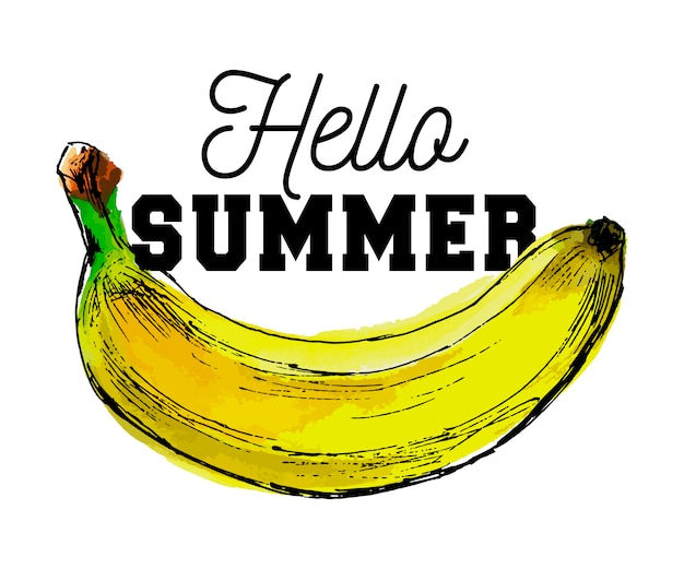 Aquarell bananenfrucht slogan hallo sommer