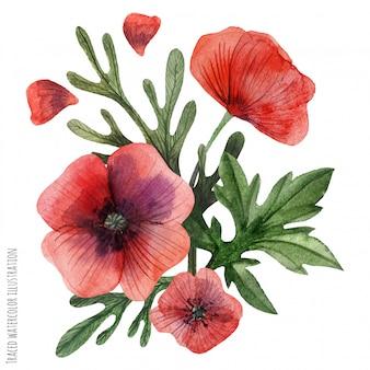 Aquarell-boutonniere der mohnblumen handgemalter