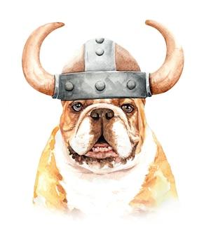 Aquarell-bulldogge mit wikingerhut