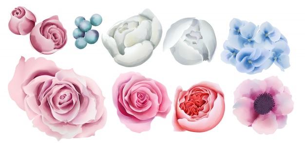 Aquarell bunte beeren, rosen, orchideen- und pfingstrosenblumen