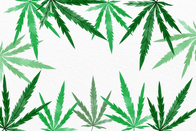 Aquarell cannabisblatt hintergrund