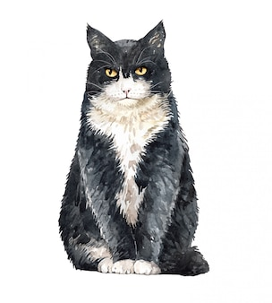 Aquarell cat british shorthair sitting.
