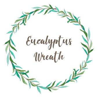 Aquarell eukalyptus leaf laurel kranz