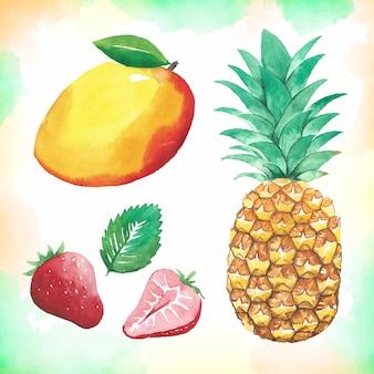 Aquarell-frucht-sammlung