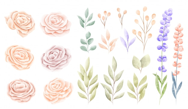 Aquarell frühlingsblumensammlung