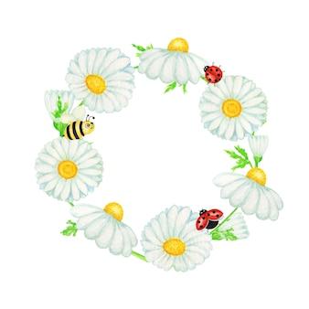 Aquarell gänseblümchen kamille blume mit fliegen marienkäfer, bienenrahmen illustration. hand gezeichnete botanische kräuter isoliert mit kopienraum. weiße blüten der kamille, knospen, grüne blätter, stängel, grasbanner
