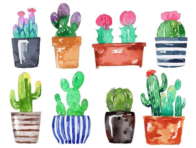 Aquarell handgemaltes kaktus-set