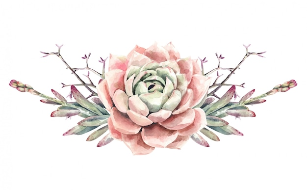 Aquarell kakteen kakteen und sukkulenten bouquet. saftige farbe. rosa blumenfarbe.