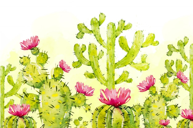 Aquarell-kaktus-hintergrund