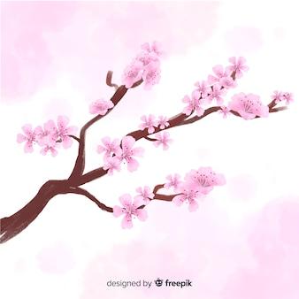 Aquarell kirschblütenzweighintergrund