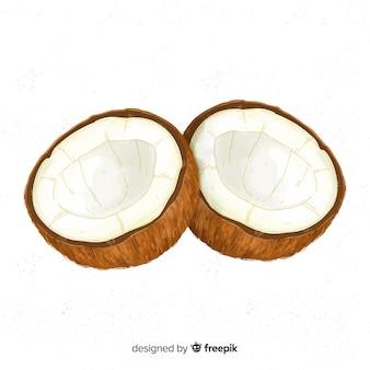 Aquarell kokosnuss abbildung