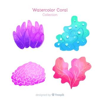 Aquarell korallensammlung