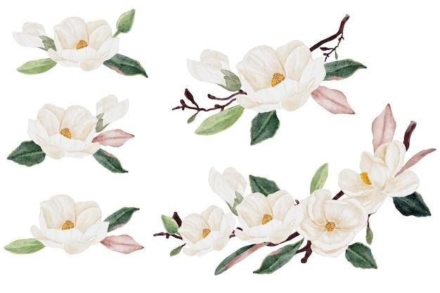 Aquarell-magnolien-blumen- und blattblumenstrauß-clipart-sammlung isoliert