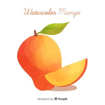 Aquarell-mango-illustration