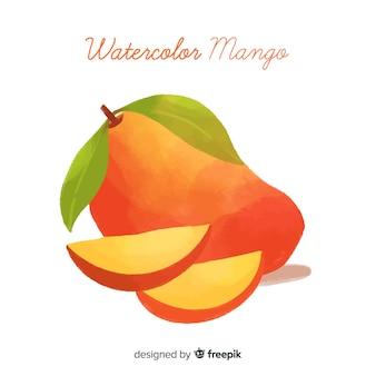Aquarell-mango-illustration