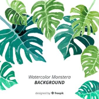 Aquarell monstera verlässt hintergrund