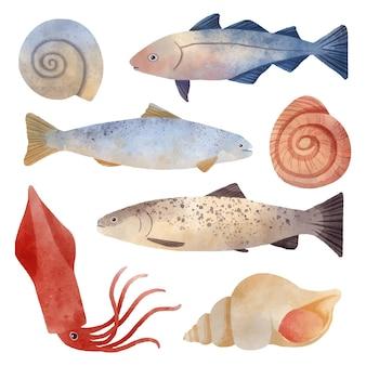 Aquarell ozean kreaturen sammlung