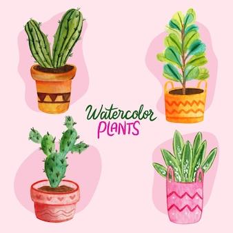 Aquarell pflanzen set