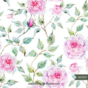 Aquarell-rosen