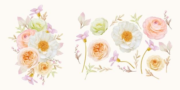 Aquarell-rosenpfingstrosen-ranunkel- und dahlienblumensammlung