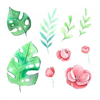 Aquarell satz tropische pflanzen blätter und blüten