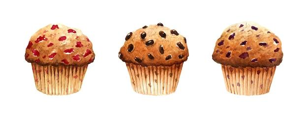 Aquarell-set aus frischen muffins mit kirschen, schokolade und blaubeeren.