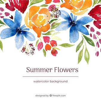Aquarell Sommer Blumen Hintergrund