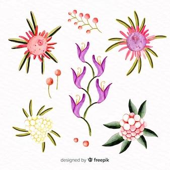 Aquarell-stil blumensammlung