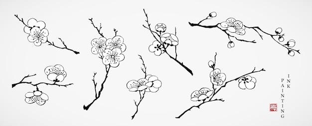 Aquarell tintenfarbe illustration kirschblüte blume zweig sammlung.