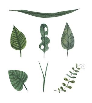 Aquarell tropische grüne tintenblätter