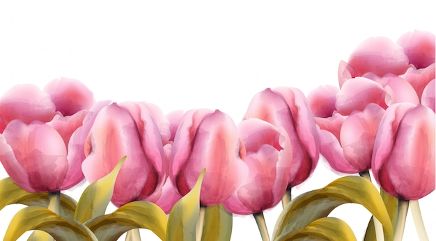 Aquarell tulpen banner