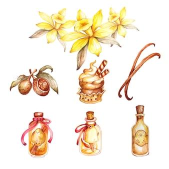 Aquarell vanille hand gezeichneten satz