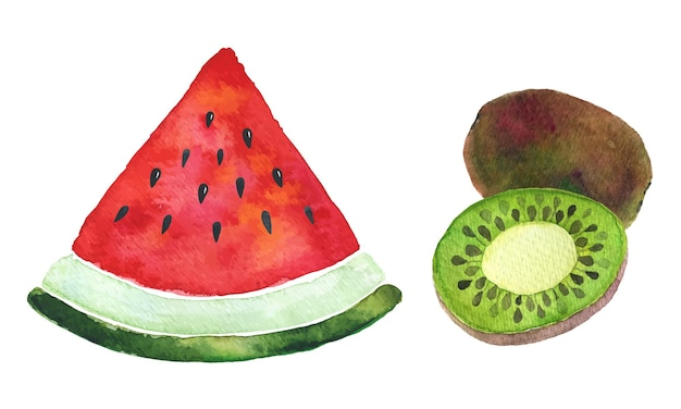 Aquarell wassermelone und kiwi. vektor-fructis-illustration