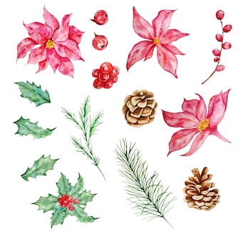 Aquarell-weihnachtsset mit tannenzweigen, weihnachtssternblüten, stechpalmenbeeren und tannenzapfen. illustration