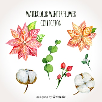 Aquarell winter blumensammlung