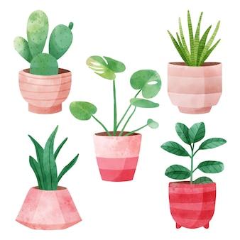 Aquarell zimmerpflanzen sammlung in töpfen