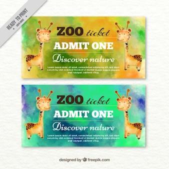 Aquarell zoo-tickets der giraffe